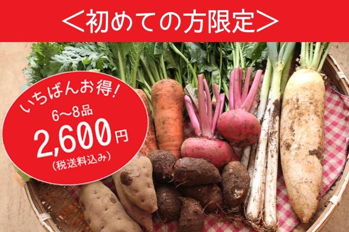 無農薬野菜の宅配 お試しセット